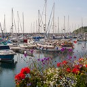St peter port harbour floral 1.jpg