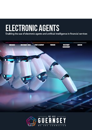 Electronic Agents brochure